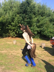 Pony3-300dpi